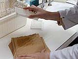 8-OHdG ELISA procedure washing the plate /oxidative sress markers/oxidative stress test